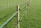 Aubigny Electric fencing 4